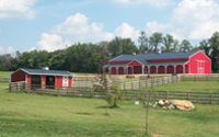Horse Barns - Run-In Shelters