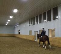 Horse Arena Photo