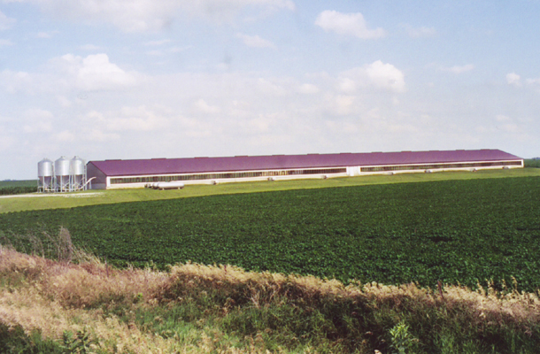 Newell IA, Hog Facility, Tom Witt Contractor Inc., Lester Buildings