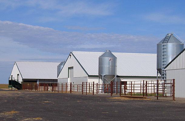 Murdock Mn Dairy Calf Housing Building Lester