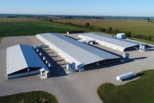 Oran MO, Delta Gilts, Hog Facility, Gilt Developer Unit, Gestation Facility, Farrowing Facility, Precision Structures Inc., Lester Buildings
