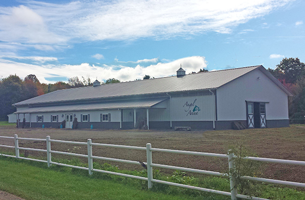 Horse Arena - Pole Barns New York