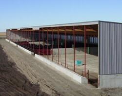 Monoslope Beef Barn for Cattle