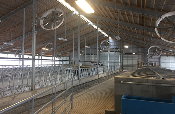 Marion OH, Beef Cattle Barn, Howell Buildings Company, Lester Buildings