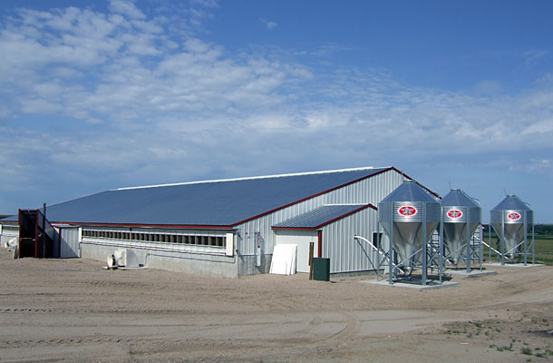Hartintonton NE, Hog facility, Pinceman sales, Lester Buildings