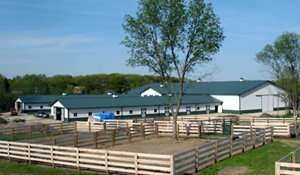 Commercial Stables and Arenas