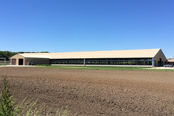 Waterloo WI, Dairy Freestall, Brad Hovden, Lester Buildings